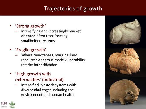 Jimmy Smith on emerging livestock markets: Slide27