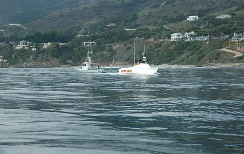Lifeguard boat passing into Dume MPA