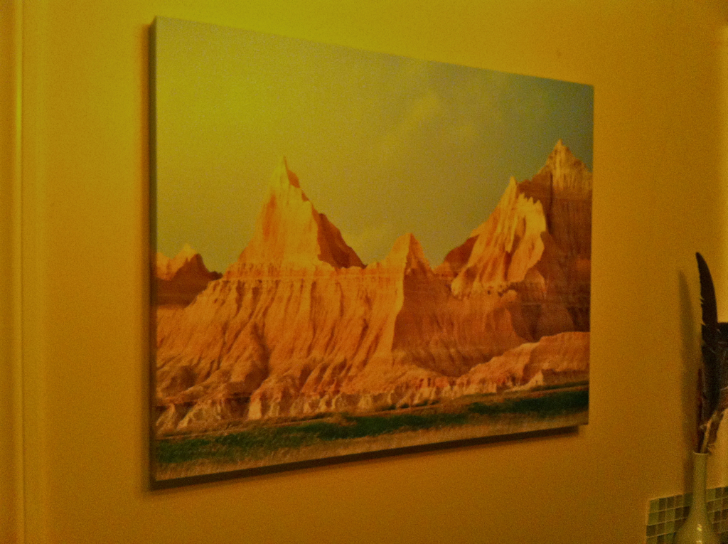 Photo printed on canvas