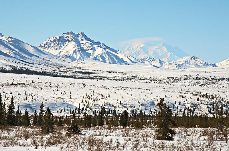Double Mountain and Denali