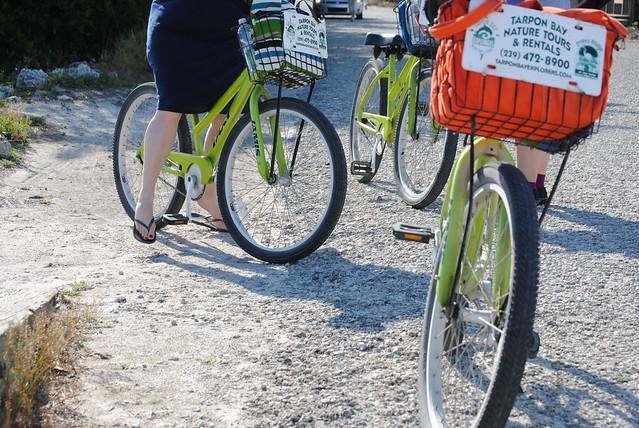 [71/366] Cycling