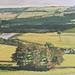 Janet E Davis, Fourstones No2, 1991, oil on board, 20x24 inches.