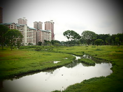Naturalised River, Bishan Park 2