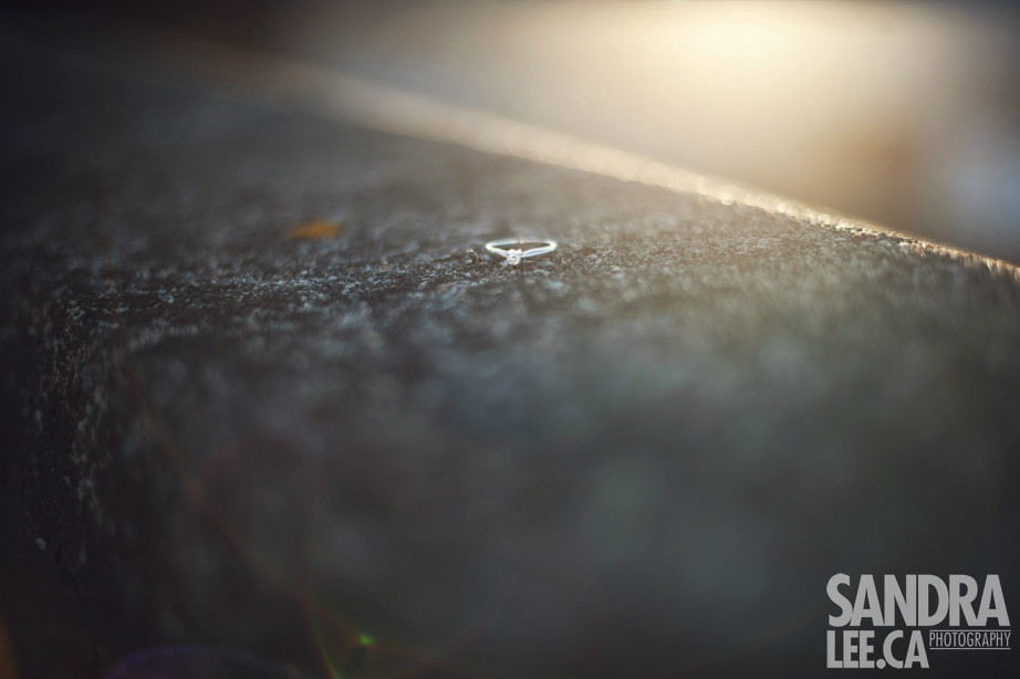 Ryan + Trudy :: E-Session