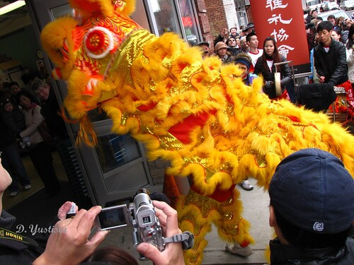 Chinese New Year Celebration in New Haven