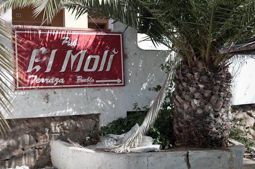Pub El Molí