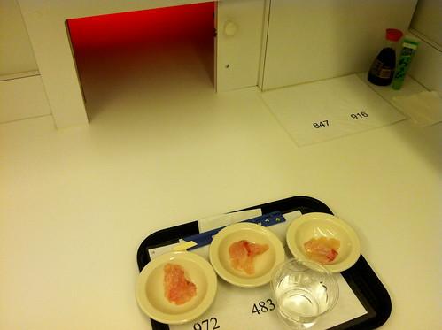 Taste test, sensory testing, Paola Briseño