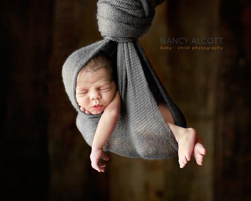 Fw: nancy alcott photography tips