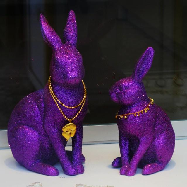rich-bunnies