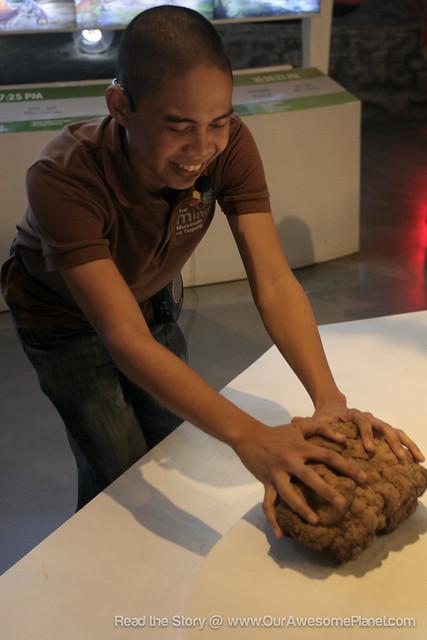 The Mind Museum @ BGC-67.jpg