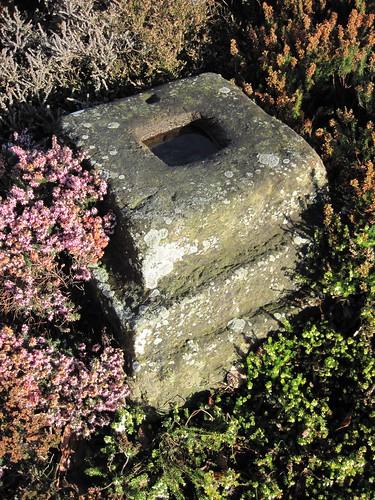 Roman Stone, Filey