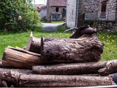 France, firewood