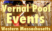 Venal Pool Events in Western MA