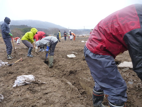 牡鹿半島でボランティア(ボランティアチーム援人) Volunteer at Oshika Peninsula(Miyagi pref), Deeply Affected by the Tsunami of Tohoku Earthquake