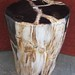 Petrified Wood End Tables for sale from Indonesia