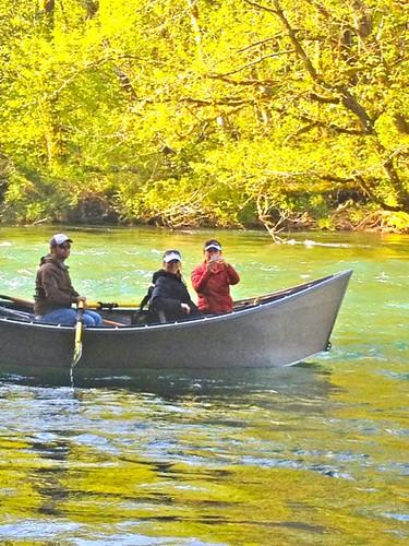 Upper McKenzie River Scenery