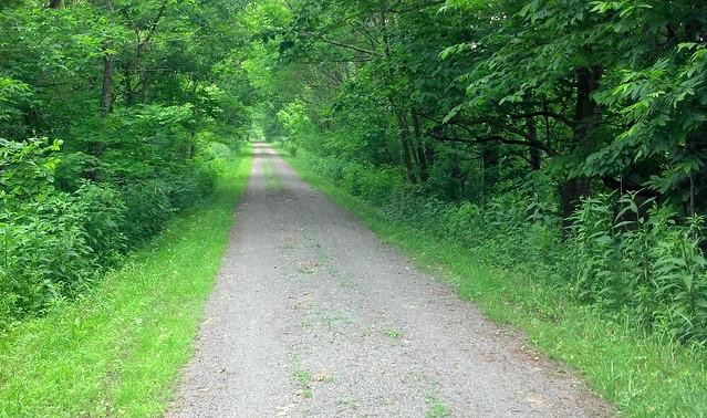 New River Trail, Pulaski, VA
