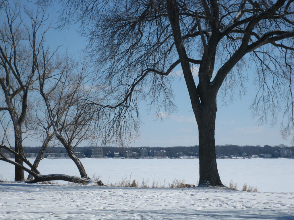 Lake Monona, Jan. 2012 2