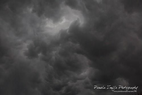 20120503-328C0809-WM by {Pamela Zmija Photography}