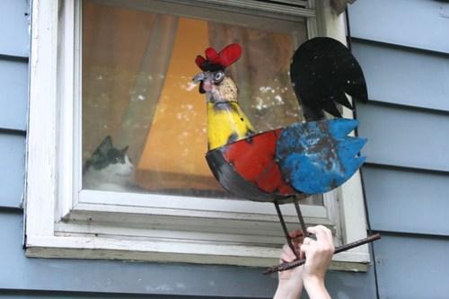 20120515_Metal_Chicken_042