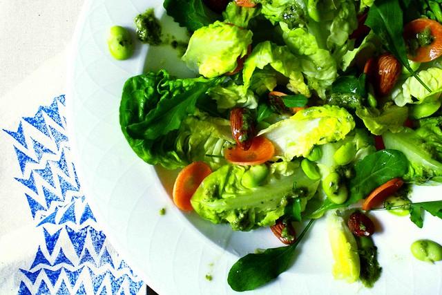 fava and rocket pesto salad