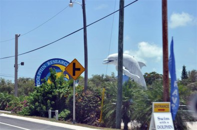 Dolphin Research Center Florida Keys, carretera al paraíso (mejor con un Mustang) Florida Keys, carretera al paraíso (mejor con un Mustang) 7214478094 28b43530e9 o