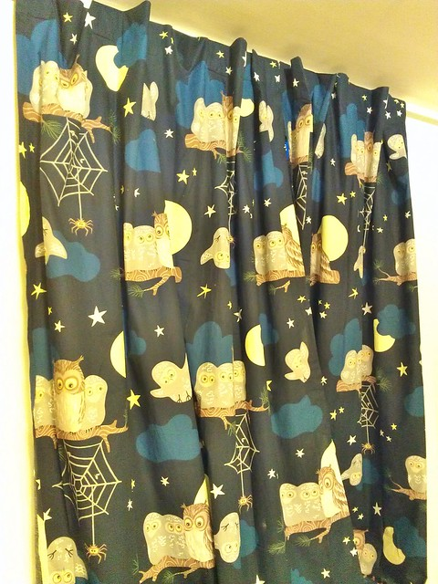 Adult baby curtains with owls, spider webs, moons and stars on them.