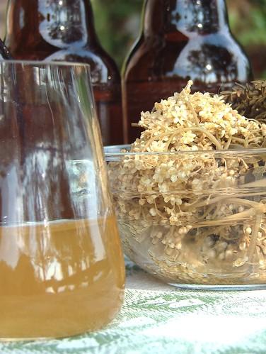 Elderflower and Herb Vinegar- Hollunder und Kräuter essig - Fläder och ört ättika -