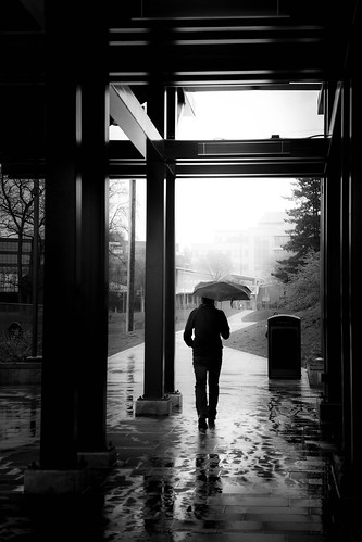Another Rainy Day by Terry Schmidbauer