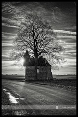 Tree Chapel