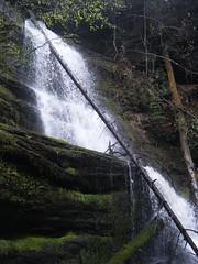 Wright Creek Upper Falls