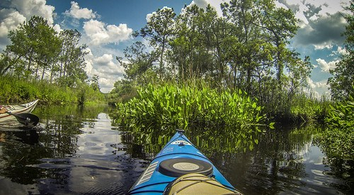 New River Paddling-115