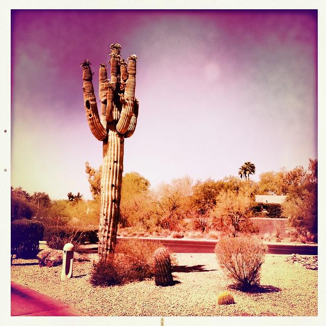 Outside my hotel room in Arizona