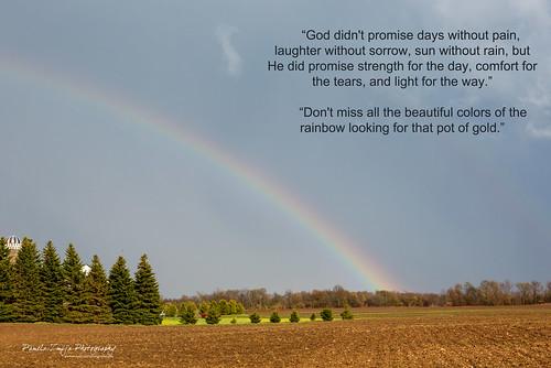 20120503-328C0757-rainbow by {Pamela Zmija Photography}