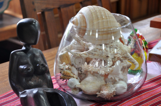 Philippine seashells