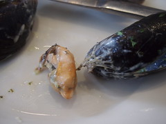 Mussels not debearded...