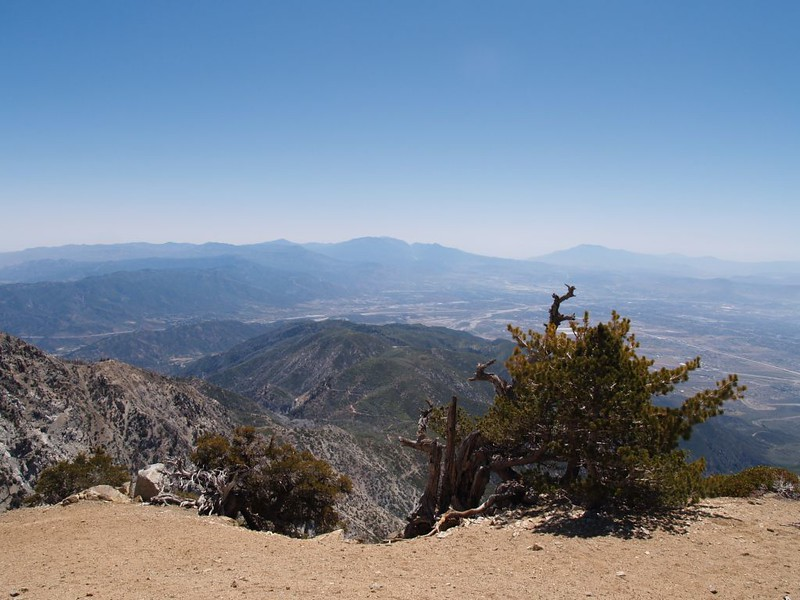View of San Gorgonio and San Jacinto from the Cucamonga Peak Summit