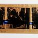 Below and Above, 28cm x 10cm, collagraph monoprint (2)