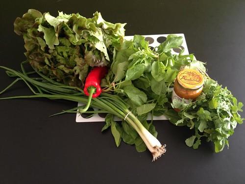 Amelishof organic CSA vegetables week 21, 2012