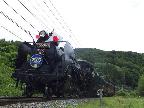 C58 363+デキ201(2000回運転) @波久礼〜樋口