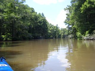 Sparkleberry Swamp Jun 2, 2012 2-09 PM