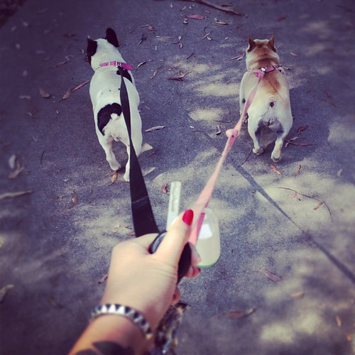 Walkies