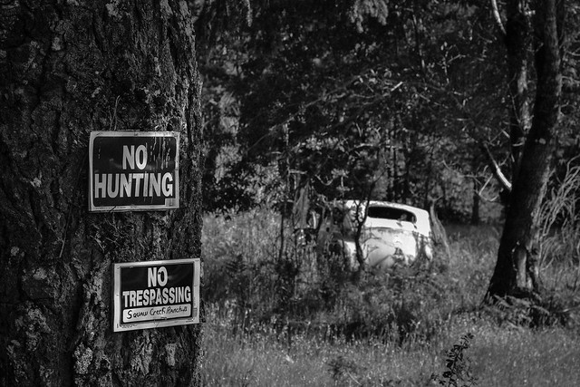 No Hunting, No Trespassing