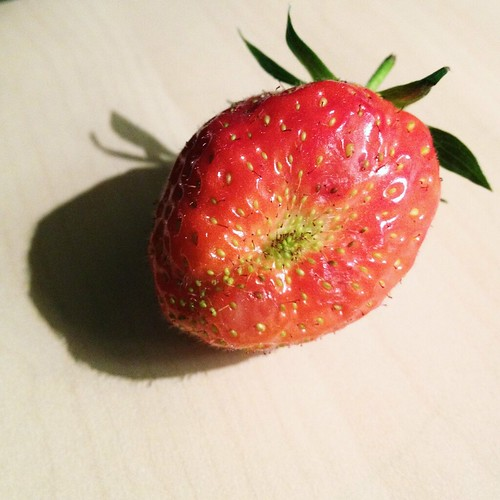 Day 209 of Project 365: Berry by cygnoir