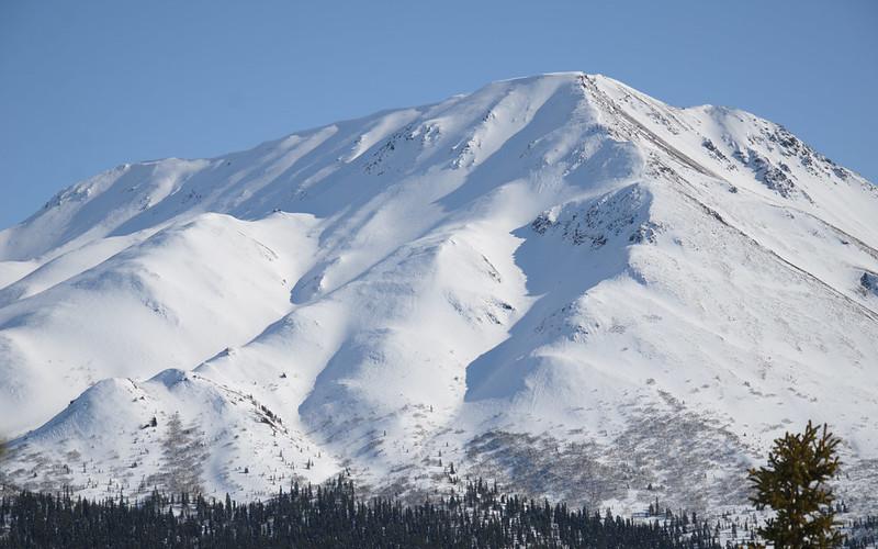 Skiing next year