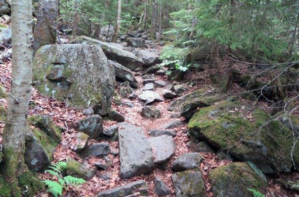 Angel Falls Trail Rocks