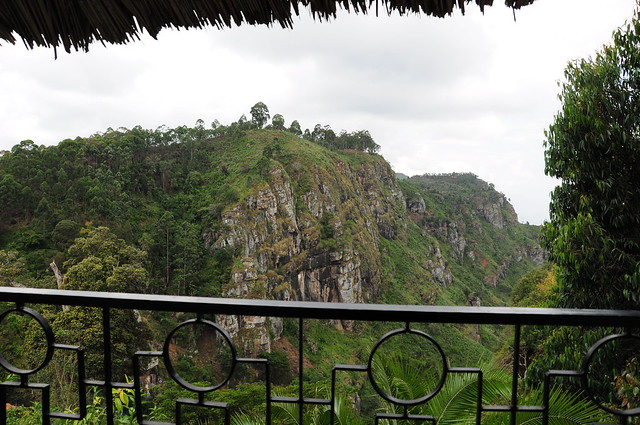 Room With A View in Usambara