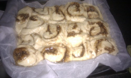 Massively over proven cinnamon buns waiting for the oven to get to temperature