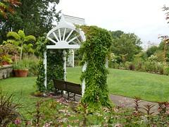 Trellis-shaded bench