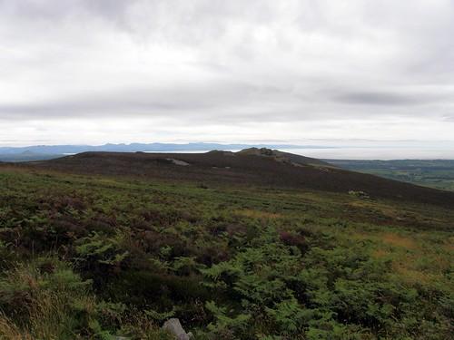 The phantom Eifl peak